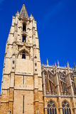 Cathedral of Leon in Castilla at Spain Stock Images