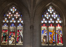 Cathedral Lyon France Painted Stained Glass Royalty Free Stock Image