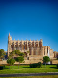Cathedral of Majorca Stock Images