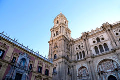 Cathedral of Malaga  Royalty Free Stock Images