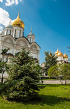 Cathedral in Moscow Kremlin, Russia Stock Photos