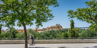 The Cathedral mosque of Cordoba from across the roman bridge royalty free stock photography