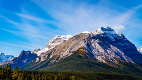 Cathedral Mountain in Yoho National Park. Snow capped peak of Cathedral Mountain in Yoho National Park in the Canadian Rocky Mountains Royalty Free Stock Photo