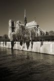 Cathedral Notre Dame. Paris famous monument Stock Photography