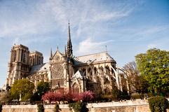 Cathedral Notre Dame de Paris Royalty Free Stock Images