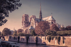 The Cathedral of Notre Dame de Paris. France Stock Photo