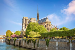 Cathedral Notre Dame de Paris Royalty Free Stock Image