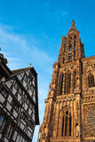 Cathedral Notre-Dame of Strasbourg Stock Images