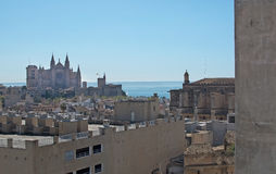 Cathedral and ocean Palma Stock Photos