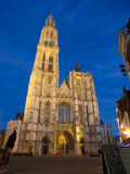 Cathedral of Our Lady in Anterpen At Night Stock Image