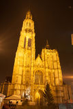 Cathedral in Antwerp - Belgium - at night Royalty Free Stock Photo