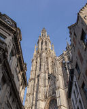 Cathedral of Our Lady in Antwerp, Belgium Stock Image