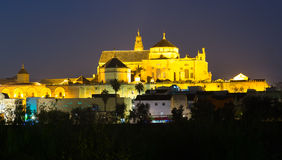 Cathedral of Our Lady of the Assumption in night time.  Cordoba Stock Image