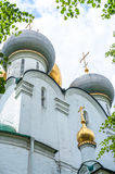 Cathedral of Our Lady of Smolensk Royalty Free Stock Photos