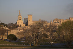 Cathedral and Palais des Papes Palace; Avignon Stock Photo