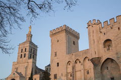 Cathedral and Palais des Papes Palace; Avignon Stock Photography