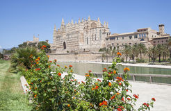 Cathedral of Palma de Majorca. With flowers on the front view, Spain Stock Photography