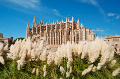 Cathedral of Palma de Majorca, Spain Stock Photography