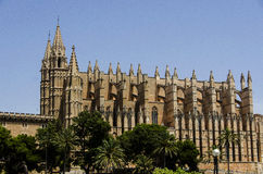 Cathedral in Palma de Mallorca Royalty Free Stock Photo