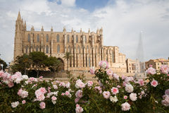 Cathedral in Palma, Majorca. Exterior of the Cathedral in Palma de Majorca, with foreground roses out of focus Stock Photo
