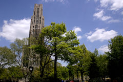 Cathedral in park. Tall cathedral on sunny day in park Stock Photography