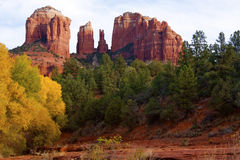 Cathedral Rock In Fall Stock Image