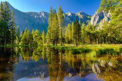 Cathedral Rocks reflecting in Merced River at Yosemite Royalty Free Stock Photo