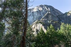 Cathedral Rocks at Yosemite National Park, CA, USA stock photos
