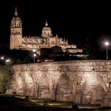 Cathedral and Roman bridge of Salamanca Royalty Free Stock Images