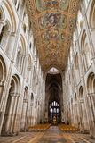 Cathedral roof and nave Royalty Free Stock Photography