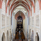 Cathedral Saint John Den Bosch Stock Photos