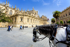 The Cathedral of Saint Mary of the See in Seville Royalty Free Stock Photo