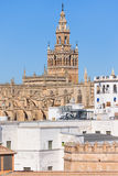 Cathedral of Saint Mary of the See in Seville Royalty Free Stock Photo