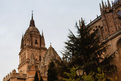 The Cathedral of Salamana Stock Photo