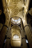 Cathedral in Salamanca Stock Photography