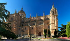 Cathedral of Salamanca Royalty Free Stock Image
