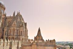 Cathedral of Salamanca Royalty Free Stock Photography