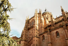 Cathedral of Salamanca Stock Photography