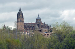 Cathedral of Salamanca with its domes Royalty Free Stock Images