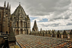 Cathedral in Salamanca Royalty Free Stock Photography