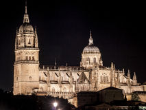 Cathedral of Salamanca Stock Images