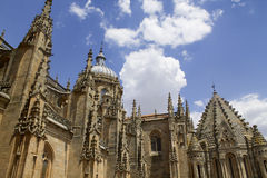 The cathedral of Salamanca Royalty Free Stock Photography