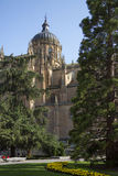 Cathedral of Salamanca - Spain Stock Images