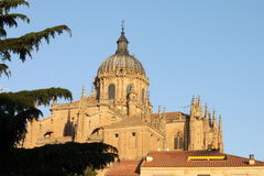 Cathedral of Salamanca. View with the cathedral of Salamanca behind some green trees. The old city of Salamanca is an Unesco World Heritage site Royalty Free Stock Photography