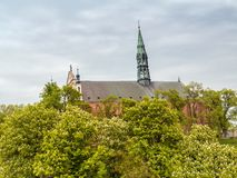 Cathedral in Sandomierz Royalty Free Stock Images
