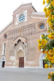 Cathedral Santa Maria Maggiore of Udine, Italy, with yellow flowers Royalty Free Stock Photography