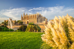 Cathedral of Santa Maria of Palma de Mallorca, La Seu, Spain Royalty Free Stock Photography