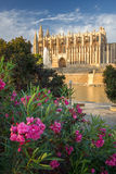 Cathedral of Santa Maria of Palma de Mallorca, La Seu, Spain Stock Photos