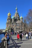 The Cathedral of the Savior on blood a spring Sunny day in Peter stock images