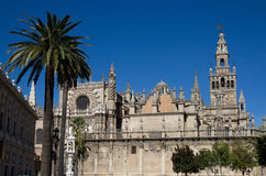 Cathedral of Seville. Under a blue sky, Andalusia, Spain Stock Images